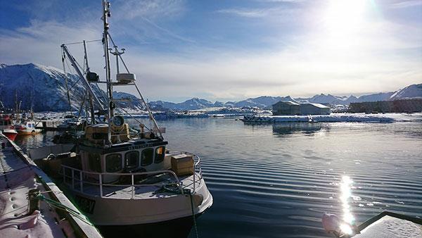 Har du lyst til å jobbe med skipselektronikk i Lofoten?